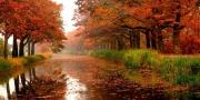 أوراق الخريف ستتساقط ...فهل ستتساقط معها الأمطار ؟