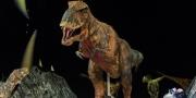 اكتشاف هيكل عظمي لديناصور نادر جنوب تونس