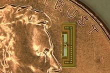 باحثون يبتكرون راديو بحجم النملة