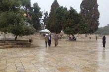 موقع طقس فلسطين يشدد على ضرورة الإسراع بإعداد الفرش الشتوي..والشتاء ...