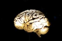 حقيقة لا خيال... في 2015 سماعة تحول الدماغ إلى بطارية ...