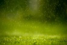 أمطار سريعة عشيّة الأول من نيسان لإطالة أمد الربيع ..وارتفاع ...
