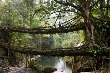 بالصور.... «ميغالايا» أكثر الأماكن مطرا على وجه الأرض