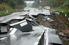 هل يمكن للحيوانات التنبؤ بالزلازل ؟