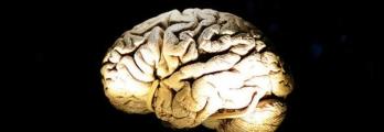 حقيقة لا خيال... في 2015 سماعة تحول الدماغ إلى بطارية تعيد شحنك بالطاق ...
