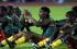 العثور على اللاعب الكاميروني ميزاغي ميتا في شقته
