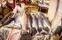 صيد السمك بالمتفجرات في تنزانيا يدمر البيئة البحرية