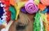 """الصور..الخيول """"نجمة"""" المواكب الملكية في جمهورية التشيك"""