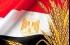مصر تشتري 55 ألف طن من القمح الأميركي