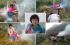 """بالصور..صيني يقوم بمحاولة """"يائسة"""" لعلاج ابنته المريضة"""