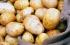 استيراد البطاطا في فلسطين محظور حتى إشعار آخر !