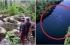 بالفيديو ..15 ثانية تكشف اكبر ثعبان في العالم قتل 320 سائح و125غطاس